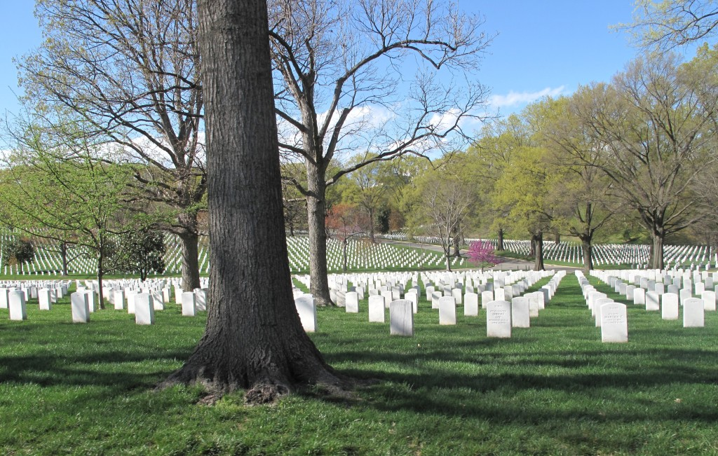 NAFCA and Arlington National Cemetery